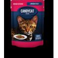Паучи Candycat с лососем в желе 85гр.